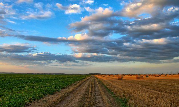 CORSO DI FORMAZIONE: Agricoltura di Precisione