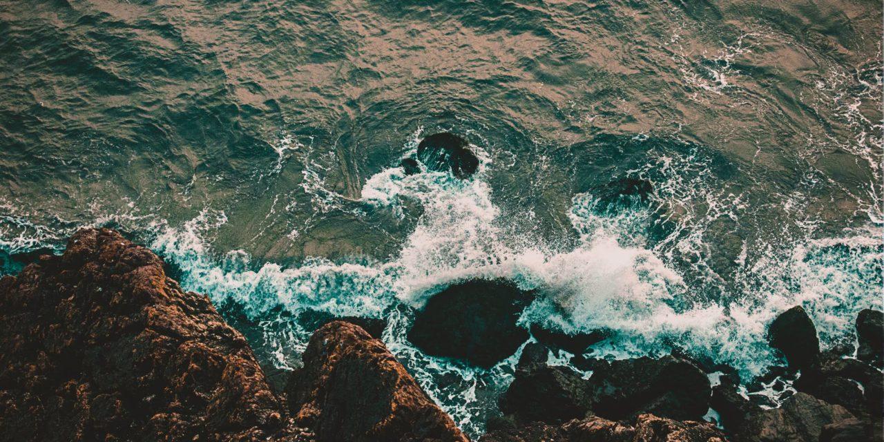 Atti VIII Simposio Internazionale: Il Monitoraggio Costiero Mediterraneo (2020)