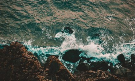 VIII Simposio Internazionale: Il Monitoraggio Costiero Mediterraneo (2020)