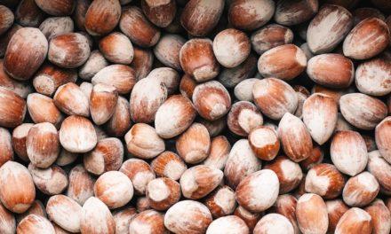"""Giornata di studio: """"Sostenibilità della coltivazione del nocciolo in Italia"""""""