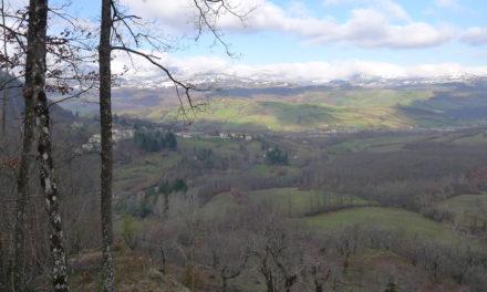 Rilievi Progetto Revival (Firenzuola)